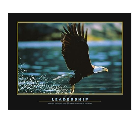 Leadership Inspirational College Dorm Poster Soaring Eagle
