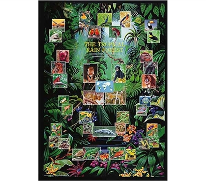 Tropical Rain Forest Animal Collage Decor Idea Cool Dorm