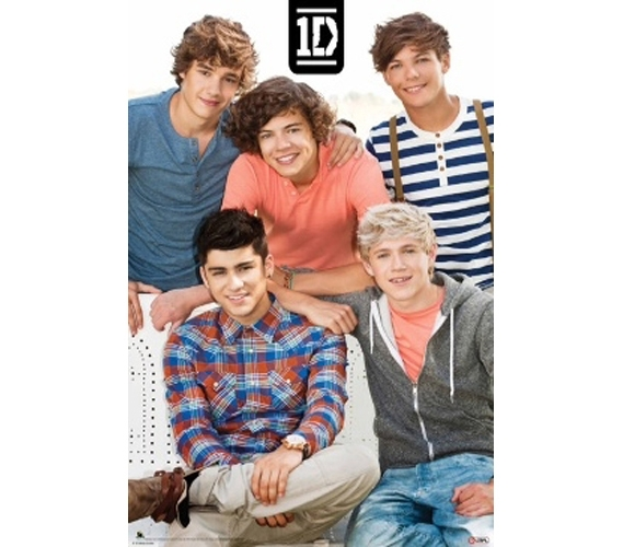 Decorate Your Dorm Room One Direction Poster Great