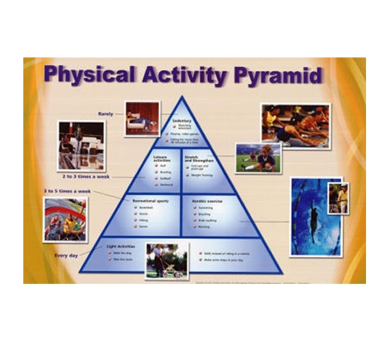 Physical Activity Pyramid Exercise Chart Dorm Poster