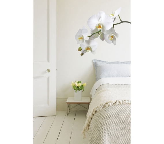 Wall Decor For White Walls : White orchid flower wall art peel n stick don t let