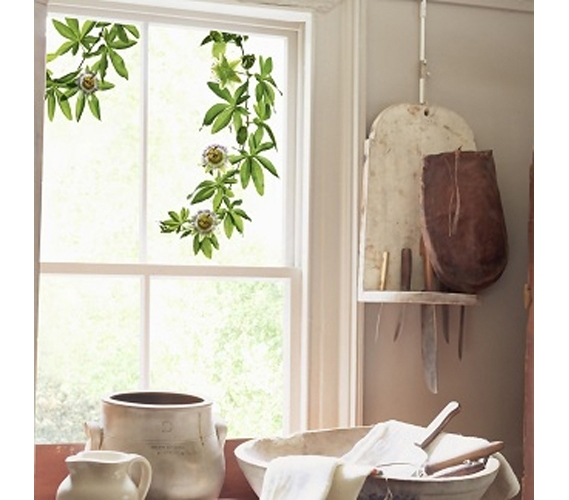 Green Dorm Decor Adds Fresh Air To Any Space Passion