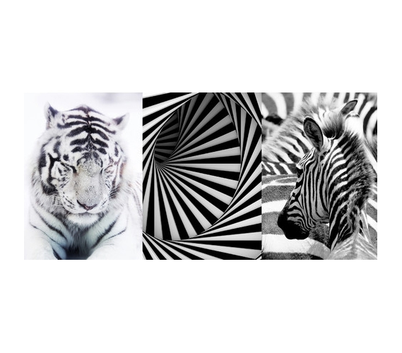 Black And White Designer Panoramic Wall Art Peel N Stick