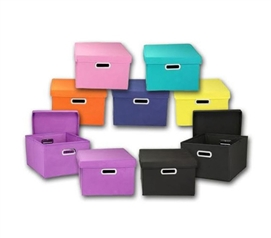 Color Cube Storage Bin - 2 Pack