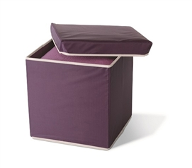 Unique Color - Storage Ottoman - Eggplant - Great Dorm Storage Item