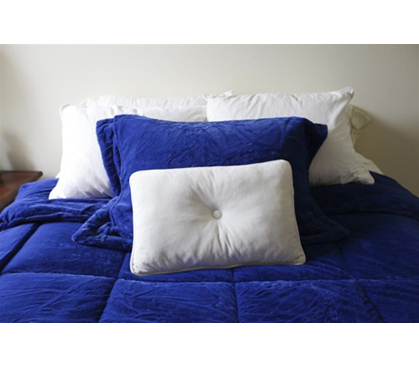 College Plush Comforter Deep Royal Blue Twin Xl
