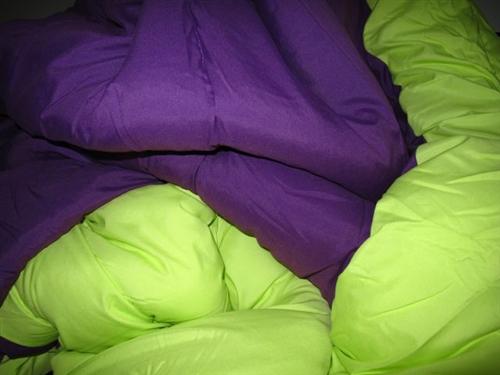 P2 3 5 Purple Fslash Lime