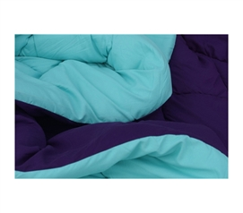 Caribbean Ocean/Downtown Purple Reversible College Comforter - Twin XL