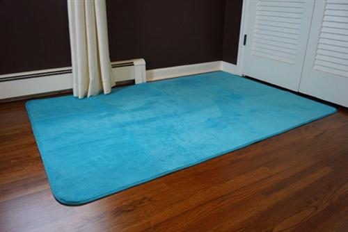 Beats The Cold Floor Microfiber Dorm Rug Comfy For