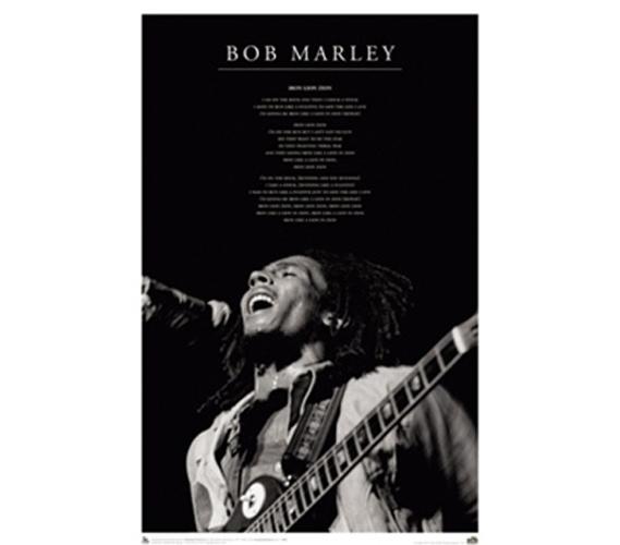 bob marley iron lion college dorm music poster reggae music themed college dorm room size. Black Bedroom Furniture Sets. Home Design Ideas
