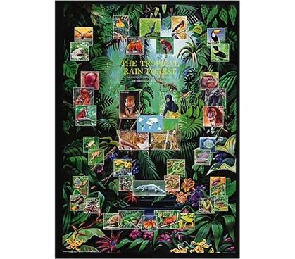 Tropical Rain Forest Animal Collage Decor Idea Cool Dorm