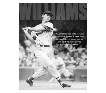 Ted Williams Tin Sign Dorm Products Decorating Your Dorm