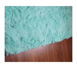 College Plush Rug - Calm Mint